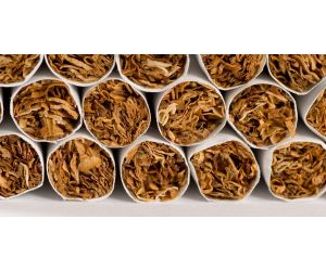 Tobacco Belts