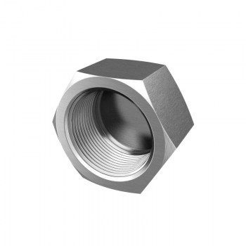 Stainless threaded hexagon cap, parallel thread - PN50 - 100