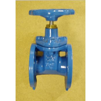 Bonnet Gate Valve for drinking water