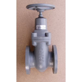 Bonnet Gate Valve