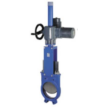 KNIFE GATE VALVE WITH RISING STEM