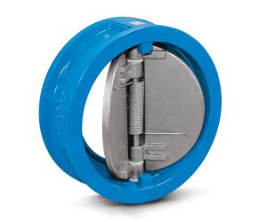 Dual plates check valve