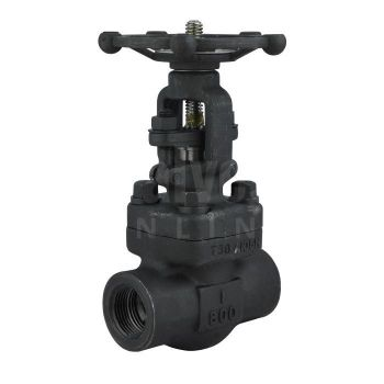 Forged Steel Gate Valve Class 800