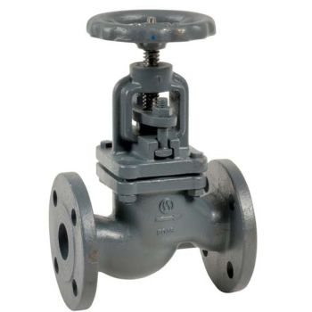 Globe valve - cast iron - RF PN16 - for water