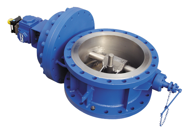 Steam Check valves